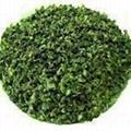 清水園茶莊--高級濃香型安溪春