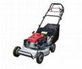 gasoline lawn mower-Honda GXV160 SFC  1