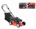 gasoline lawn mower-173cc