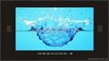 """19"""" 防水液晶电视"""