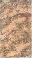 30X60cm galzed wall tile