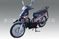 電動摩托車 亞洲豹HR-011