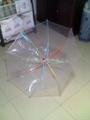 供应传统环保伞 3