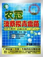 供应淡紫拟青霉菌根结线虫杀虫剂
