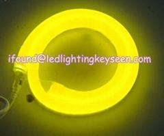 LED Neon tube (80LEDs /100LEDs/ 240LEDs per meter)