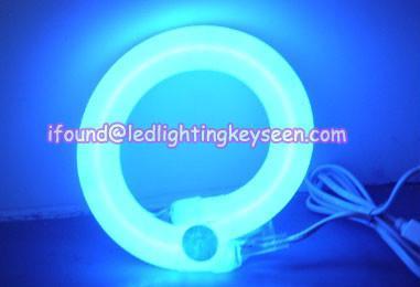 Blue LED Rope Light/ LED Neon-16*26mm/ 10*14mm/ 9*13mm 1