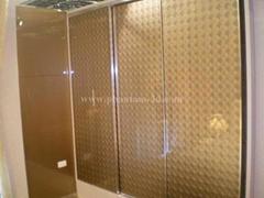 glass wardrobe door