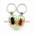 Novel insect amber keychains promotion gifts