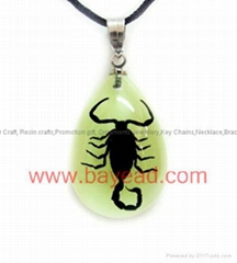 Real Insect Amber Necklace Fashional Jewelry for Valentines Gift