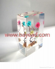 Real Flower Resin Amber Paperweights