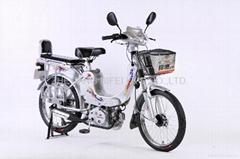 New Gasoline Bike BFB-01