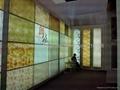Stretch Ceiling Film 2
