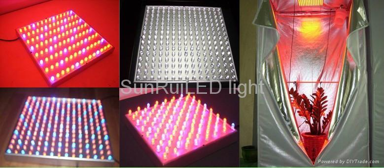 Buy Led Lights