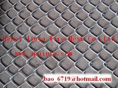Chain Link Fence Series