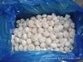 速凍雙孢菇