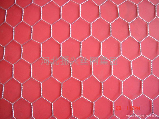 Hexagonal wire netting zx china manufacturer