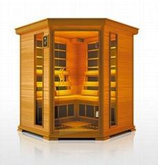 infrared sauna room,dry sauna