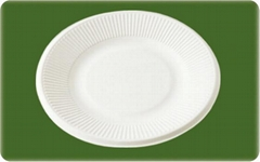 biodegradable bagasse disposable 6 inch paper plate