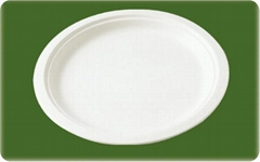 decomposable sugarcane 10 inch round plate