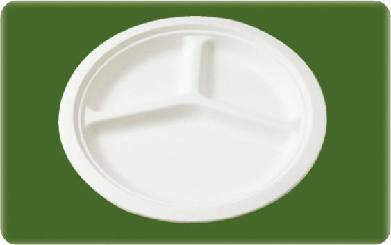 decomposable sugarcane 10 inch round plate 2