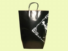 牛皮购物纸袋