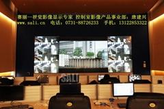 賽麗電子系統(上海)有限公司
