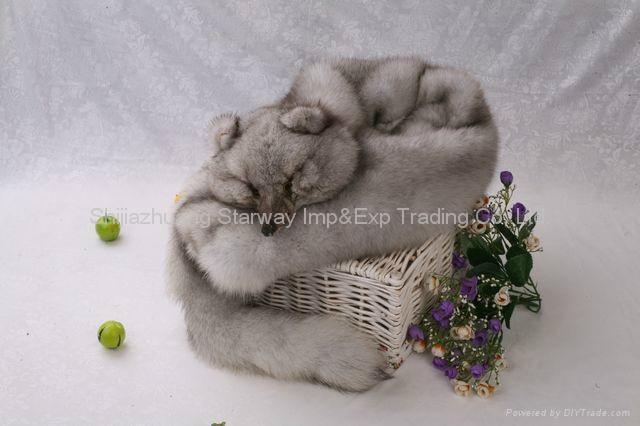 Fox Fur Scarves Fur Scarf Fox Fur Wraps Fur Shawl Fur Cape Fur Poncho 4 Colors 4