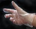 Disposable PE Gloves PE Gloves PolyEthylene Gloves  1