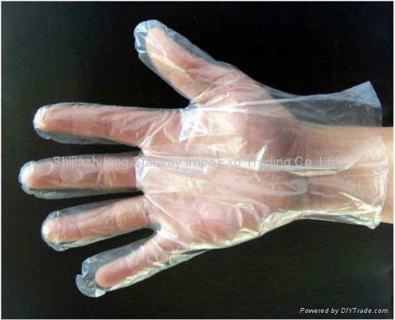 Disposable PE Gloves PE Gloves PolyEthylene Gloves  3