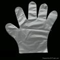 Disposable PE Gloves PE Gloves PolyEthylene Gloves  2