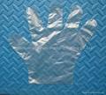 PE Gloves PolyEthylene Gloves Disposable PE Gloves  1