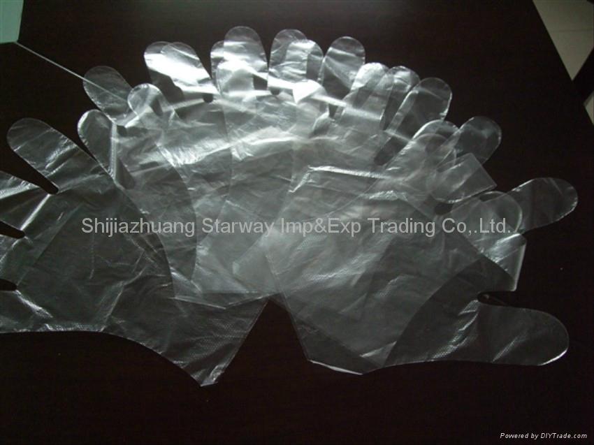 PE Gloves PolyEthylene Gloves Disposable PE Gloves  3