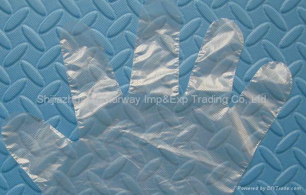 PE Gloves PolyEthylene Gloves Disposable PE Gloves  2