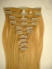 CLIP HAIR EXTENSIONTS