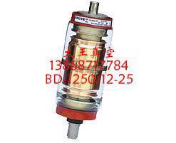 ZKTD-1250/12-25真空灭弧室 4