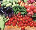 脫水菜輻照消毒、滅菌 1