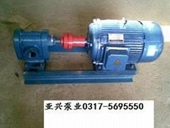 供应各种型号2CY齿轮泵