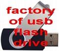 custom promotional usb flash drives