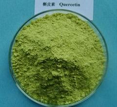 Extract Quercetin