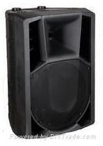 Professional audio speaker