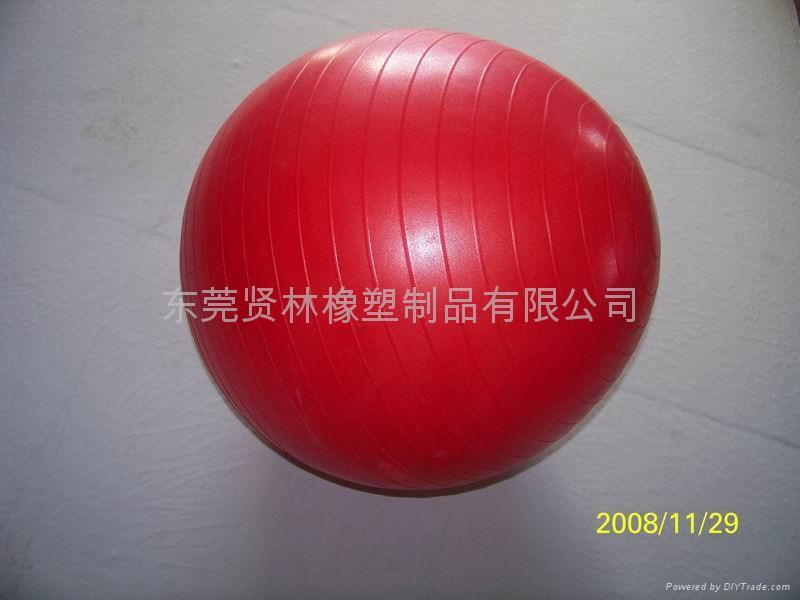 Fitness Ball,Gym Ball 2