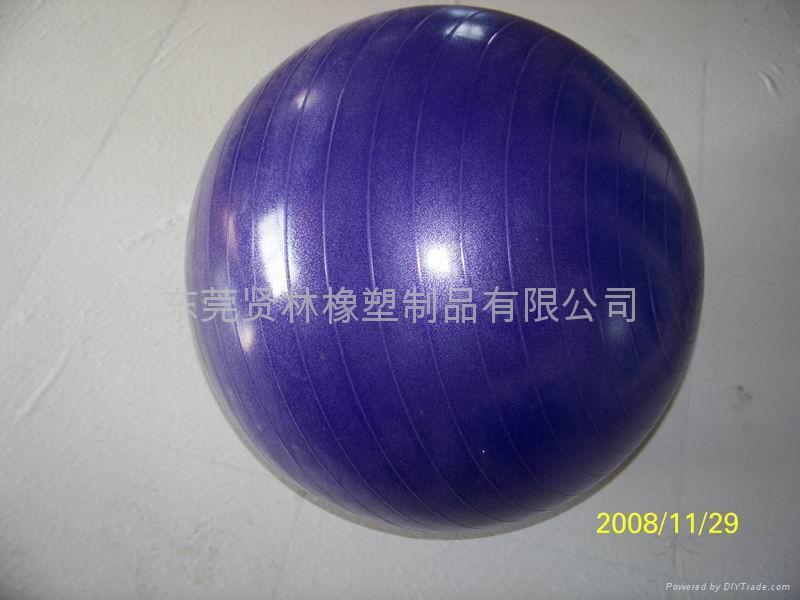 Fitness Ball,Gym Ball 1