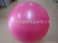 Fitness Ball,Gym Ball 5