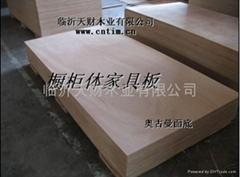 臨沂天財E0,E1,E2衣櫃板專用膠合板