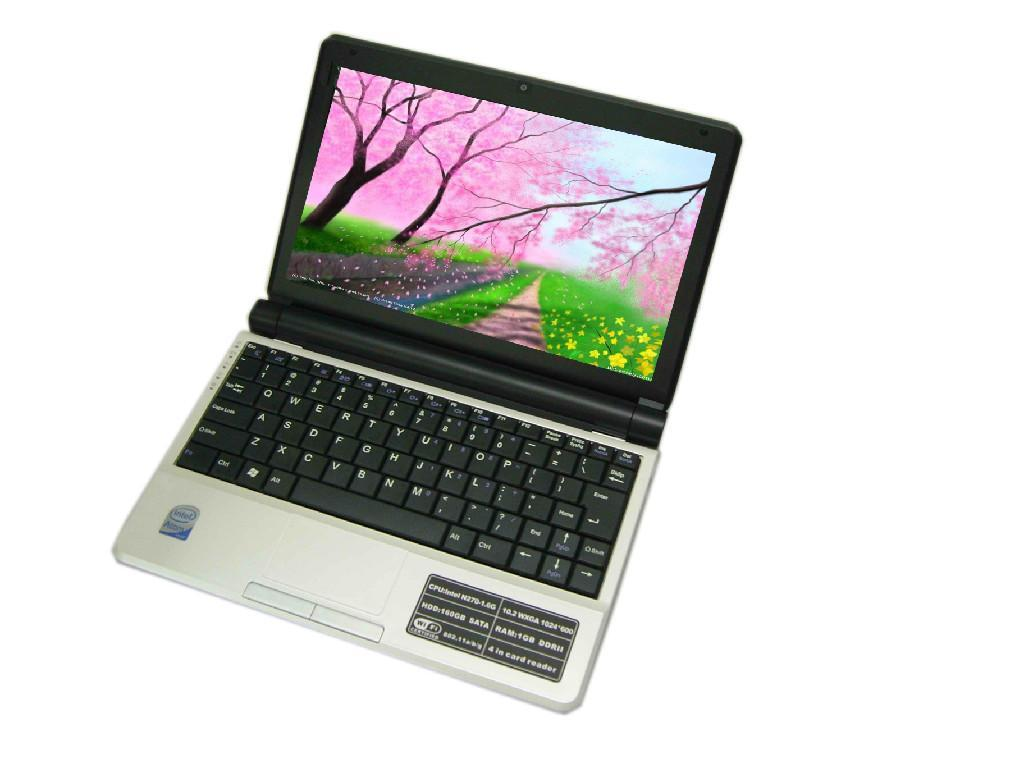 should students textbooks be replaced by notebook computers essay Start studying writing: persuasive essay topics should student's textbooks be replaced by notebook computers or should students who fail their classes be.