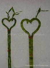heart-shape bamboo