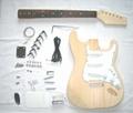 Guitar Kits  Diy Guitar kits