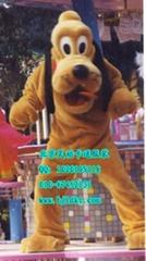 出售北京灵动卡通服装,动漫人偶服装,嘿嘿狗