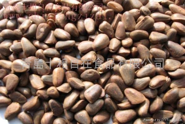 Pine nut  1