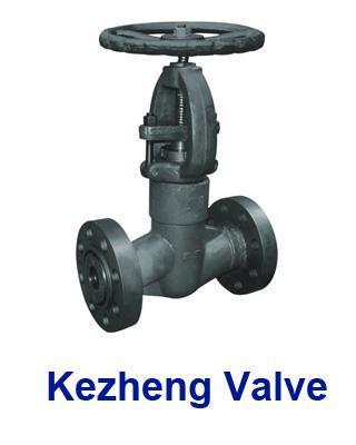 Pressure Seal Globe Valve 1